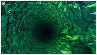 緑の深淵、岡城二の丸跡の空井戸360°全天球映像4月3日 2016年
