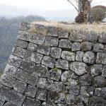 岡城 石垣