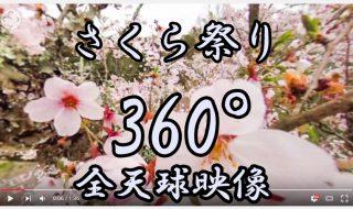 岡城桜まつり、二の丸三の丸の桜 360°全天球映像4月3日 2016年