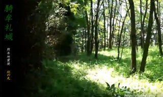騎牟礼城(鎮西城)の北の丸の映像
