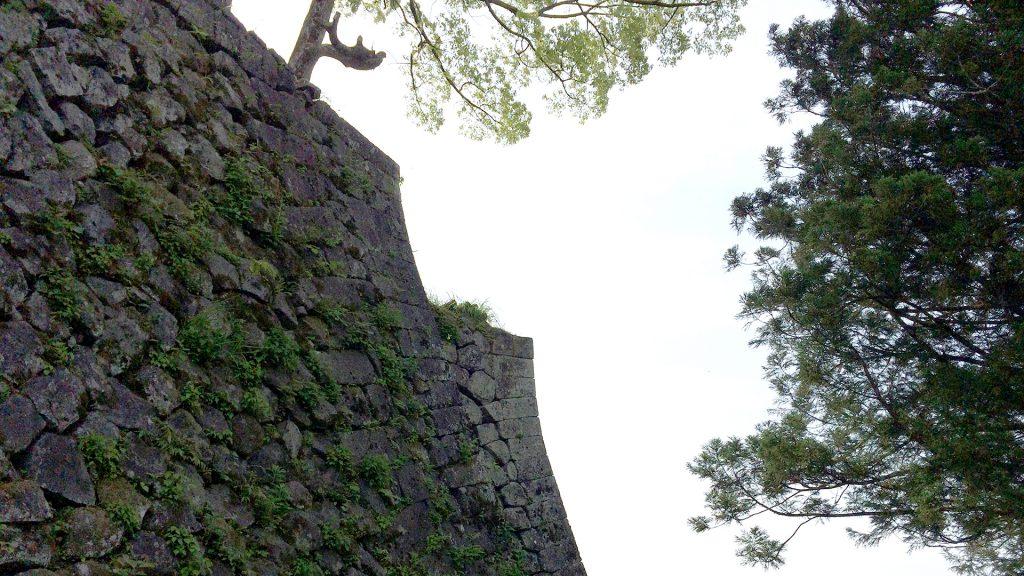 本丸北二重の石垣隅角部、三重にも見える。