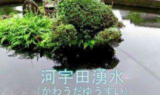 竹田湧水群「河宇田湧水(かわうだゆうすい)」