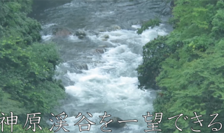 九州大分県の観光旅行、自然観光や建築観光にオススメの、神原渓谷大橋と神原渓谷 の写真アイキャッチ