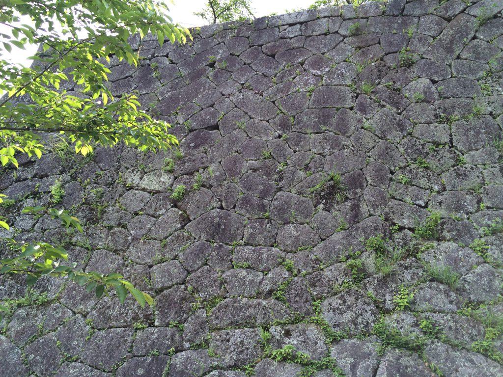 岡城本丸の石垣、整層乱積の写真