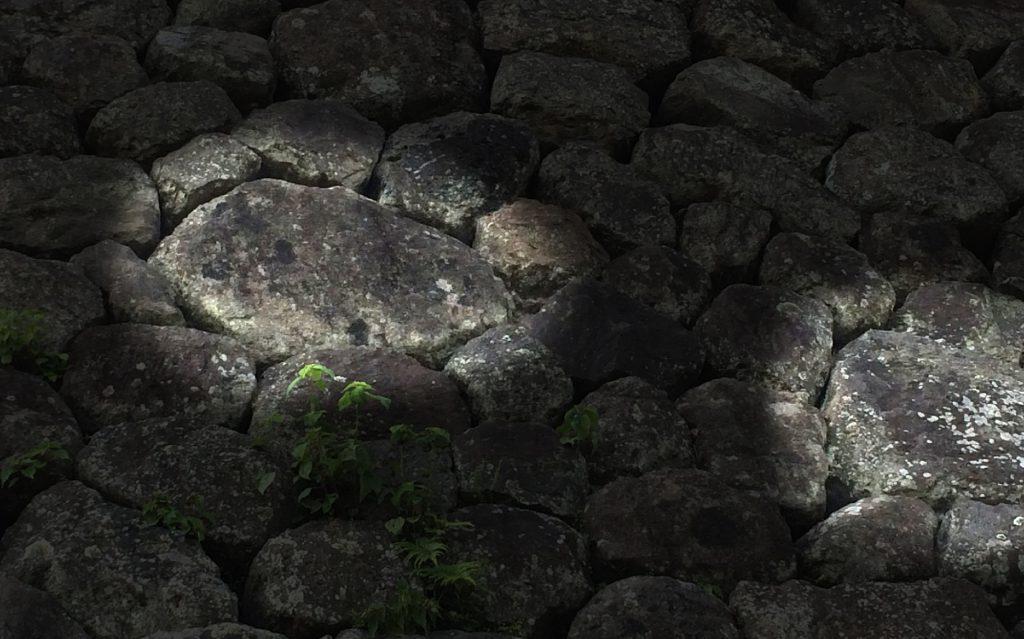 岡城本丸の石垣車軸築