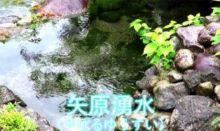 シリーズ竹田湧水群その2「矢原湧水」 -日本の名水百選-