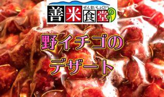 善米食堂の野イチゴのジェラート