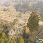 天空の豊後竹田「岡城」ドローン空撮4K写真 20160226 vol.3Aerial in drone the Oka castle/Okajou 4K Photography