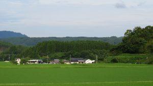 三船城遠景01