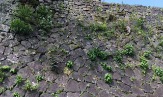 西の丸御殿のみごとな石垣、九州の大分県竹田市の岡城観光旅行におすすめのスポット。