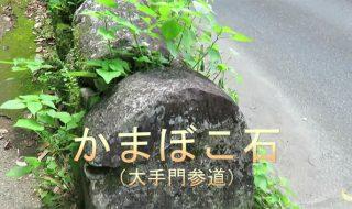 九州の大分県竹田市のお城、岡城の石垣の珍しい石垣の石「かまぼこ石」