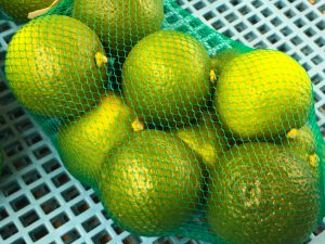 竹田市といえばカボス、サンマと最強タッグの柑橘類。東京の目黒でサンマと毎年コラボ中。