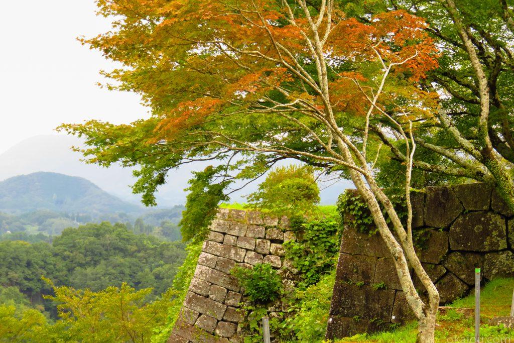西中仕切城壁からの紅葉