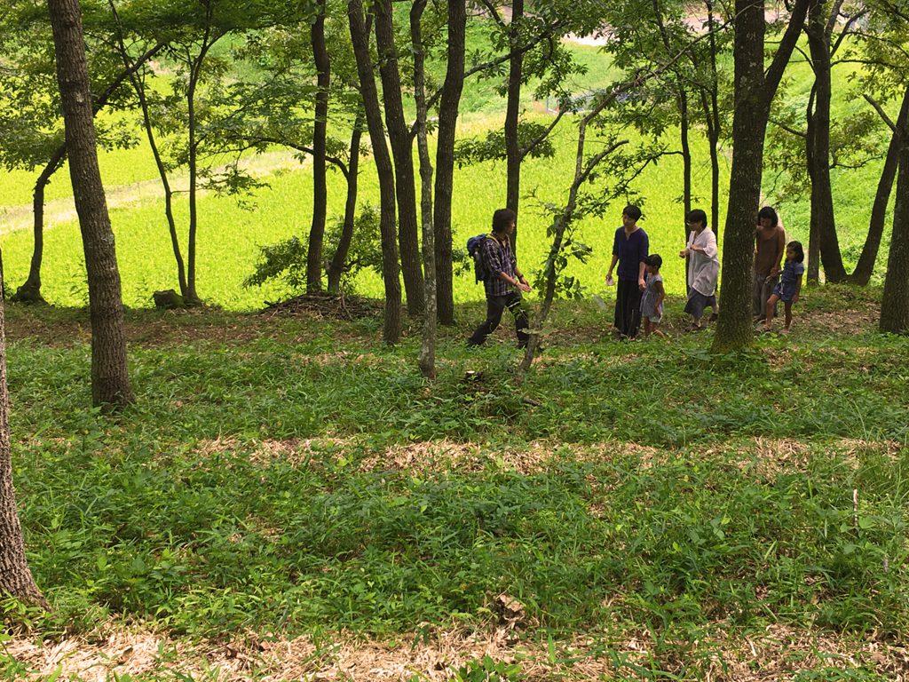 サリモス森案内人AKI(渡邊昭男)森林浴リラクゼーション・森のなかでお昼寝も。