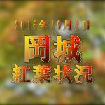 九州の大分県の紅葉の名所岡城