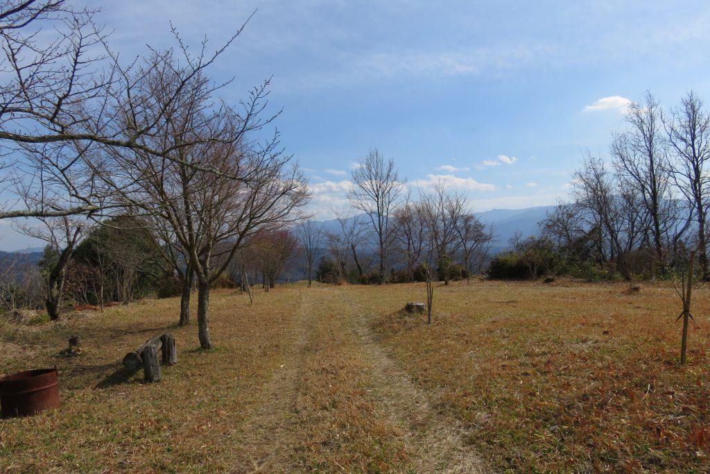 騎牟礼城址公園保存会の手できれいに整備された、騎牟礼城址公園と桜の木