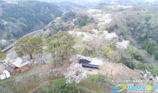 岡城跡 二の丸 滝廉太郎像  桜 Vol.1