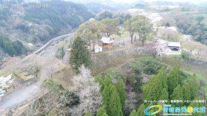 岡城跡 本丸 桜の写真 Vol.1