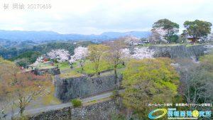 岡城跡 三の丸 桜の写真 Vol.2