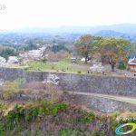岡城跡 本丸 桜の写真 Vol.3