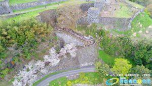 岡城跡 大手門 桜の写真 Vol.4