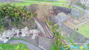 岡城跡 大手門 桜の写真 Vol.7