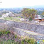 岡城跡 本丸 桜の写真 Vol.10