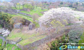 岡城跡 大手門 桜の写真 Vol.10
