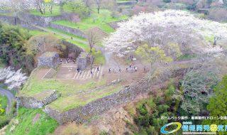岡城跡 大手門 桜の写真 Vol.11