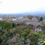 岡城跡 本丸 桜の写真 Vol.11
