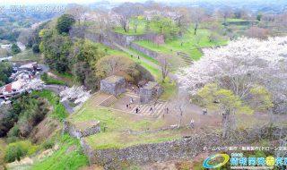 岡城跡 大手門 桜の写真 Vol.12