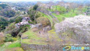 岡城跡 大手門 桜の写真 Vol.13