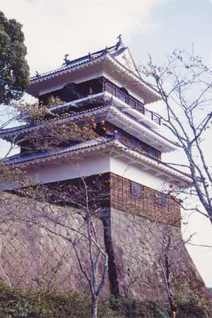 復元された岡城の天守閣 カラー写真