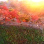 動画:【貴重】紅葉に彩られた三日月岩 夕焼けに染まる岡城 ドローン映像4K 20181105 Crescent rock colored with autumn leaves